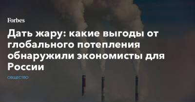 Дать жару: какие выгоды от глобального потепления обнаружили экономисты для России