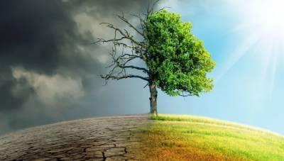 Мировая экономика может потерять до 18% ВВП к 2050 г из-за изменения климата - Swiss Re