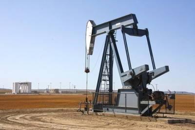 В Миприроды спрогнозировали, когда в России закончатся нефть и газ